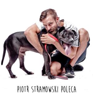 Piotr_poleca-2-1024x1024